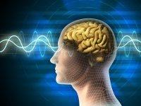 Theta Beyin Dalgaları ve Şifa